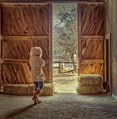 Do you live in a barn?? (mgstanton) Tags: massaudubon animal drumlin farm lincoln barn barndoor light hay haybale exiting exit hood boots