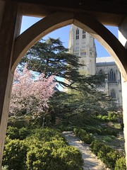 Bishop's garden (KFiabane) Tags: nationalcathedral washingtondc bishopsgarden
