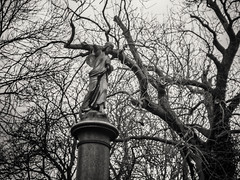 20190302-0216-Edit (www.cjo.info) Tags: 1840 1840s 19thcentury allsaintscemeterynunhead bw england europe europeanunion london m43 magnificent7 magnificentseven magnificentsevengardencemeteries microfourthirds nikcollection nunhead olympus olympuspenfgzuikoautos40mmf14 olympuspenf penfmount silverefexpro silverefexpro2 southwark unitedkingdom westerneurope angel animal art blackwhite blackandwhite blur bokeh broken carving cemetery decay digital fauna flora focusblur girl gravegraveyard manualfocus monochrome mythicalcreatures overgrown people plant sculpture shallowdepthoffield statue stone stonework tree wingedcreature woman wooded