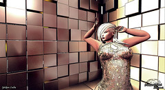 ^^Swallow^^ Ears Contest 2019 - diamond00 Diesel 1 (- ̗̀ ÐίΔϺѺƝÐ ̖́-) Tags: gold golden cube swallow ears contest bento shi cx cerberus xing studio inc eclipse design catwa maitreya