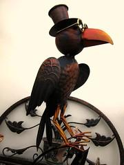 ' the Professor ' (John(cardwellpix)) Tags: friday 21st december 2018 professor crow ornament