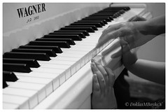 Whose hand is that?! :-o (Doklas M Boyke) Tags: piano hand hands blackwhite