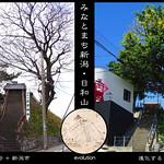 みなとまち新潟・日和山の写真
