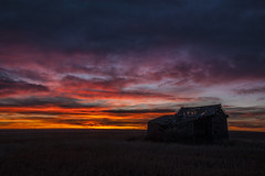 The Golden Hour (Neil Young Photography (nyphotos.ca)) Tags: sunrise barn goldenhour nikon d700 fotoman nyphotos alberta canada rural country neilyoung neilyoungphotography
