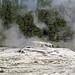 Bijou Geyser (post-Giant eruption) (mid-afternoon, 9 June 2018)
