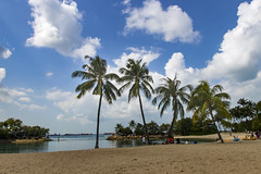 Siloso Beachside (Synghan) Tags: silosobeach singapore beach siloso traveldestination attraction landmark local regional sea seascape seaside sentosaisland sentosa tropicaltrees photography horizontal outdoor colourimage fragility freshness nopeople foregroundfocus adjustment interesting awe wonder fulllength depthoffield cloudscape sky beautiful watersedge nature natural vacation picnic journey cool canon eos80d 80d sigma 1750mm f28 dc os ex 실로소 비치 실로소비치 해변 풍경 열대나무 싱가포르