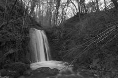 Cascade du Creux Lague - BLegny - Jura (francky25) Tags: cascade du creux lague blegny jura franchecomté hiver noir et blanc
