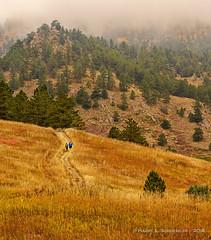 Foggy Morning Hiking In Chautauqua (HarrySchue) Tags: boulder chautaugua colorado hiking landscape nature mountains fall fallcolors fog nikon trees
