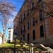 ESCALINATA DEL FOTOGRAFO ALFONSO, MADRID DE LOS AUSTRIAS 8767  3-2-2019