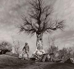 """""""Dead Tree"""" (HodgeDogs) Tags: landscape sky people tree 4aengine 4agames merro pc blackandwhite nvidia metroexodus explore"""