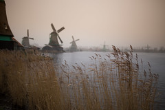 in the distance (chtimageur) Tags: windmills dutch dof winter moulins molens zaanse schans nederland netherlands landscape end day canon 6d sigma 35 14 art