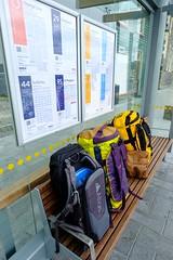 20181226 003 Christchurch Bus Stop (scottdm) Tags: 2018 christchurch december newzealand southisland summer travel busstop luggage duffelbag atlasathletepack