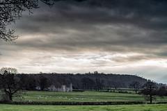 Haughmond Abbey Ruins-1 (jayneboo) Tags: shropshire haughmond abbey ruins landscape sheep light