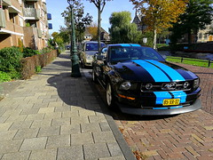 2007 Ford Mustang (Dirk A.) Tags: 85xrsz sidecode6 2007 ford mustang onk