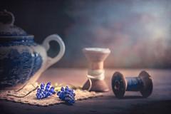 Blue spring (Ro Cafe) Tags: nikkor105mmf28 sonya7iii stilllife blue darkmood flowers muscaris sugarbowl vintagespools naturallight textured