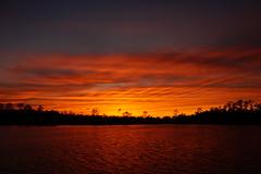 ...sky on fire (Jim Atkins Sr) Tags: sunset spectacularsunsetsandsunrises cloudsstormssunsetssunrises cloudscape northcarolina northwestcreek fairfieldharbour sony sonya58 sonyphotographing