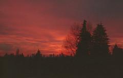 Production Way Sunset (jvde) Tags: 3570mmf3345nikkor burnaby coolscan film fujicolor400 gimp nikonfe