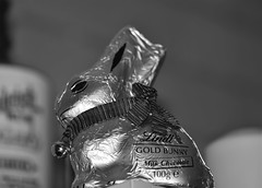Gold Bunny (Dreaming of the Sea) Tags: crazytuesday blackandwhite tamronsp90mmf2811macro nikond7200 easter rabbit chocolate goldbunny dof depthoffield bell