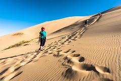Climbing the Sand Dune (joeri-c) Tags: khongorynels gobi desert mongolia gobidesert nomad nomadic travel tourism asia arid dry sand dune sanddune gobigurvansaikhannationalpark tourist khongoryn nature nikon d750 nikond750 20mm