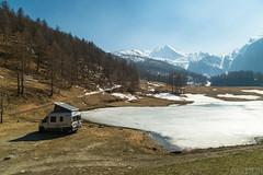 Sosta libera in montagna - 27.03.2019-18 ( YariGhidone ) Tags: rosso montagna cheriè dog cocker spaniel