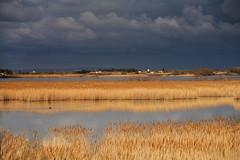 Camargue storm (JLM62380) Tags: camargue storm france light clouds sky lagune herb ciel nuages lumiére orage nature saintesmariesdelamer lagoon water eau village