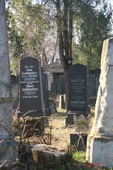 IMG_8266 (Pfluegl) Tags: wien vienna zentralfriedhof graveyard europe eu europa österreich austria chpfluegl chpflügl christian pflügl pfluegl spring frühling simmering
