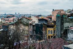 Fener, Istanbul (Visavis..) Tags: fener turkey 35mmequiv citylife oldcity urban fujix100 istanbul