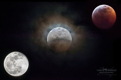 Lunar Eclipse Panel (Candy McDonald) Tags: moon lunareclipse eclipse night nightphotography nikon nikonphotography nikkor photoshop nikcollection godscreation bloodmoon