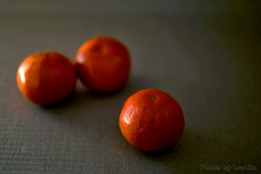 2019_01_18_01 (leotim007) Tags: mandarinenzitrus munich germany