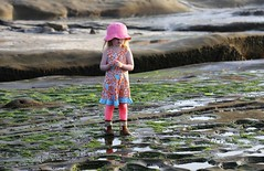 Pink in a Green Tidepool World (Scott RS) Tags: pink child tidepool pacific westcoast hat ocean brown green water peaceful wandering wondering small exploring walking sweet cute person young beach play discovering tiny