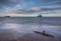Driftwood. (AlbOst) Tags: seacliffbeach bassrock eastlothian driftwood treebranches outgoingtides northsea bassrocklighthouse longexposures
