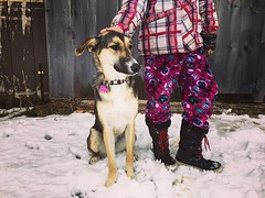 Pink girls (jessalynn_sammons) Tags: iphone barn farmdog girl dog friends bestfriends instagram ifttt