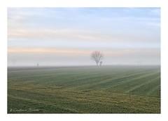 Before the morning mist had cleared (Cristiano Busato) Tags: veneto regioneveneto nebbia mist misty morning mattina padua padova campagna countryside earlymorning