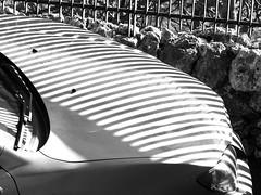 Parking near a Fence B&W (zeevveez) Tags: זאבברקן zeevveez zeevbarkan canon bw lines car fence