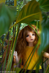 Olive in the bushes 3-Flickr.jpg (small_life_stories) Tags: 3dstorytelling dollphotography doll photographicnovel graphicnovel bjd onourown photonovel miniatureadventure discovery amy dolladventure photostory miniaturephotography iplehouse toy plants wonder miniature toyphotography toyadventure ball joint balljointdoll