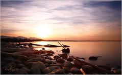 Bodensee (ElbSachse) Tags: canon eos 6d mkii canonef24105lisusmf4 elbsachse sonnenuntergang bodensee abendstimmung österreich langzeitbelichtung landschaft steine sonne