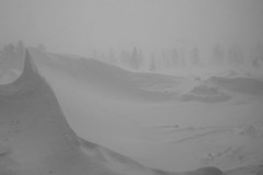 Blizzard / Lumimyrsky 1 (akkujala) Tags: finland lapland blizzard muonio pallas
