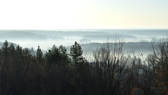 Morning fog in the valley of the river Psel. Chervlene village, Sumy region Ukraine. (ALEKSANDR RYBAK) Tags: изображения пейзаж туман утро весна сезон погода природа долина деревья images landscape fog morning spring season weather nature valley trees