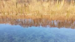 River Reflections - Gmunden - Austria (Been Around) Tags: river reflections riverreflections gmunden spring frühling beenaround dietraun traunriver gmundenamtraunsee see lake europa salzkammergut autriche europe oberösterreich upperaustria eu aut oö österreich austria fluss reflection