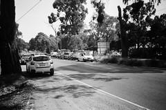 Road and parked cars (Matthew Paul Argall) Tags: hanimex35es fixedfocus focusfree 35mmfilm kentmerepan100 100isofilm blackandwhite blackandwhitefilm road street montrose