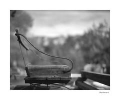 Buckboard (agianelo) Tags: chair seat buggy western monochrome bw bn blackandwhite