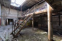 Lost Place (Frank Guschmann) Tags: berlin lostplace frankguschmann nikond500 d500 nikon staircase stairwell escaliers architektur stairs stufen steps abandoned