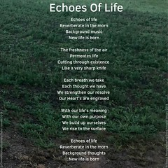 Echoes of Life (communicatingcreativelydj) Tags: communicatingcreatively poem poems poetry life existence heart thoughts echoes