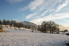 Snow-covered Meadows (Bephep2010) Tags: 2018 7markiii aeschi aeschibeispiez alpen alpha berg bern bäume herbst himmel ilce7m3 landschaft sel1635z schnee schweiz sony switzerland wiese alps autumn blau blue fall landscape meadow mountain schneebedeckt sky snow snowcovered trees weiss white ⍺7iii kantonbern ch