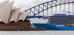 Three Icons (0dhran) Tags: canon 6d ovation seas sydney harbour bridge opera house marine summer australia