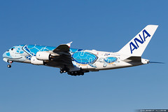 All Nippon Airways ANA Airbus A380-841 cn 262 JA381A (Clément Alloing - CAphotography) Tags: all nippon airways ana airbus a380841 cn 262 ja381a toulouse airport aeroport airplane aircraft flight test canon 100400 spotting tls lfbo aeropuerto blagnac aeroplane engine sky ground take off landing 1d mark iv avgeek avgeeks planespotter spotter