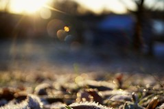 Countryside (Stefano Rugolo) Tags: stefanorugolo pentax pentaxk5 k5 kmount kepcorautowideanglemc28mm128 ricohimaging lensflare flare countryside autumn bokeh frost depthoffield barn light backlight abstract manualfocuslens manualfocus manual vintagelens hälsingland sweden sverige