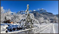 Allez, en piste ! (watbled05) Tags: branche ciel extérieur givre hautesalpes massifdesecrins montagne neige paysage rochers vallouise piste