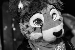 8M5A3635-4 (loboloc0) Tags: furries frolicparty frolic party furry club dance suit suiter fur fursuit dj sf san francisco indoor people costume performer animal blur portrait