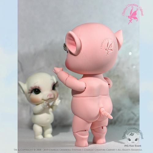 Mini Pigs image